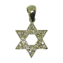 Gold Diamond Pendant 0.17 CT. T.W. Model Number : 1707